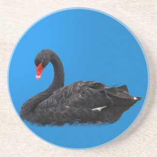 Black Swan Coaster