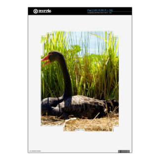 Black Swan Nesting Decal For The iPad 2