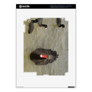 Black Swan Skins For iPad 3