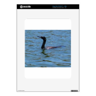 Black Swan Skin For iPad