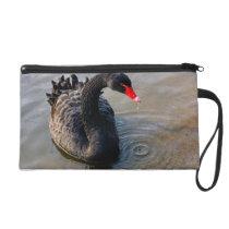 Black Swan Swimming In Water, Animal Photograph Wristlet Purse