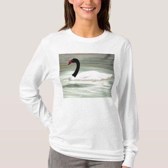 Black Swan, White Body Women's Shirt