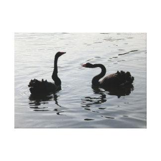Black Swans Greeting Canvas Print