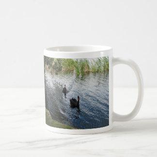 Black Swans, Perth Classic White Coffee Mug