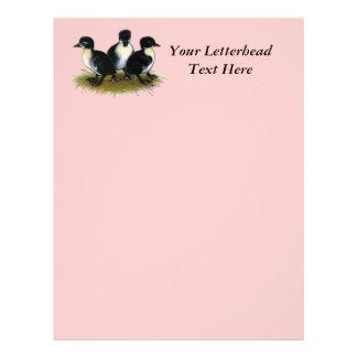 Black Swedish Ducklings Letterhead Design
