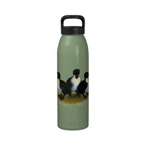 Black Swedish Ducklings Water Bottles