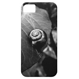 Black Swirl iPhone SE/5/5s Case