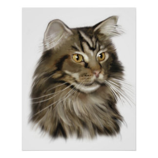 Black Tabby Maine Coon Cat Posters
