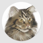 Black Tabby Maine Coon Cat Round Stickers