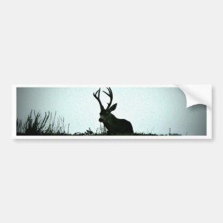 Black Tail Buck Bumper Sticker