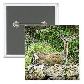 Black Tail Deer Buttons