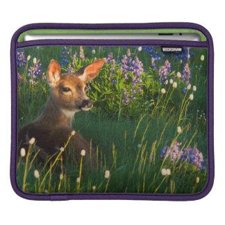 Black-tail Deer Fawn, alpine wildflowers iPad Sleeve