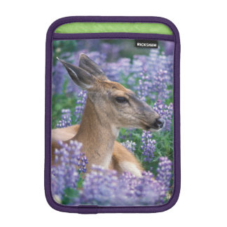Black-tailed deer, doe resting in siky lupine, sleeve for iPad mini