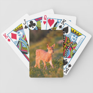 Black-tailed Deer fawn Bicycle Playing Cards