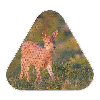 Black-tailed Deer fawn Bluetooth Speaker