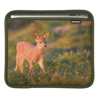 Black-tailed Deer fawn iPad Sleeve