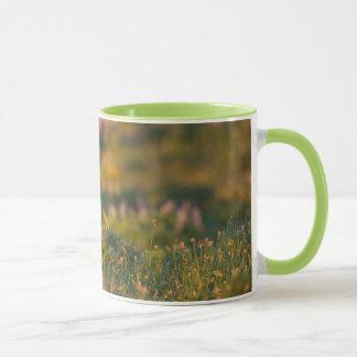 Black-tailed Deer fawn Mug