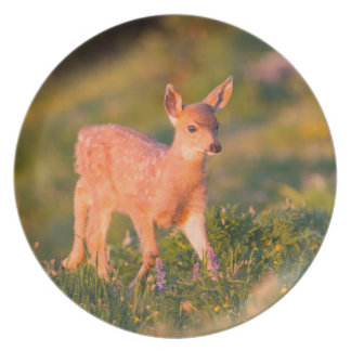 Black-tailed Deer fawn Plate