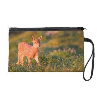 Black-tailed Deer fawn Wristlet