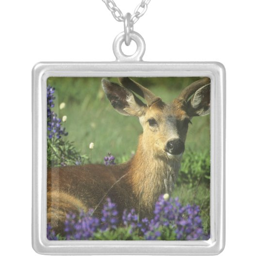 Black-tailed Deer, Odocoileus hemionus), in Silver Plated Necklace