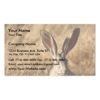 Black-tailed Jackrabbit Business Card
