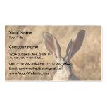 Black-tailed Jackrabbit Business Card Template