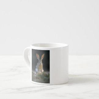 Black-tailed Jackrabbit, Lepus californicus, 2 Espresso Cup