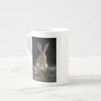 Black-tailed Jackrabbit, Lepus californicus, 2 Tea Cup