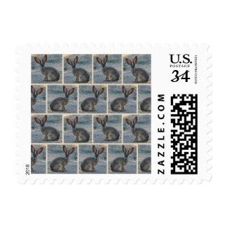 Black tailed jackrabbit postage