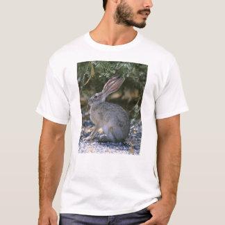 Black-tailed Jackrabbit T-Shirt
