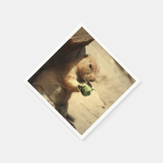 black-tailed-prairie-dog-26.jpg disposable napkin