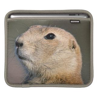 Black Tailed Prairie Dog iPad Sleeve