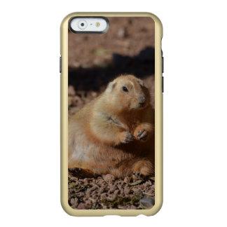 Black Tailed Prairie Dog Incipio Feather® Shine iPhone 6 Case