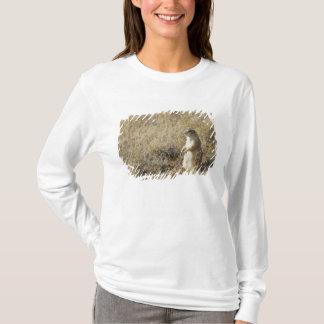 Black-tailed Prairie Dog T-Shirt