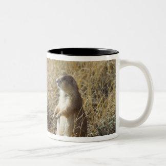 Black-tailed Prairie Dog Two-Tone Coffee Mug