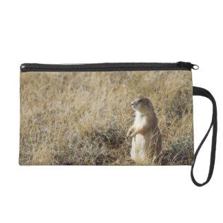 Black-tailed Prairie Dog Wristlet