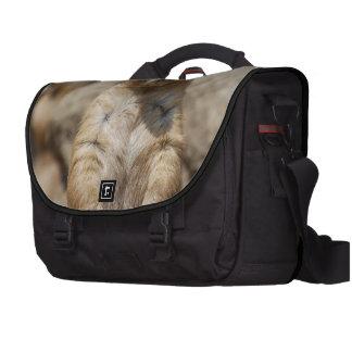 Black Tailed Prairie Dogs Laptop Messenger Bag