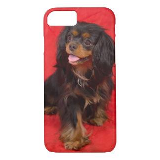 Black Tan Cavalier King Charles Puppy iphone Case