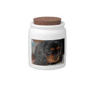 Black & Tan Cavalier King Charles Spaniel Candy Ja Candy Jar