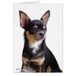Black & Tan Chihuahua card