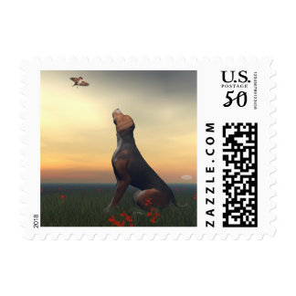 Black tan dog looking a bird flying postage