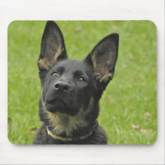 Black & Tan GSD Pup Mouse Pad