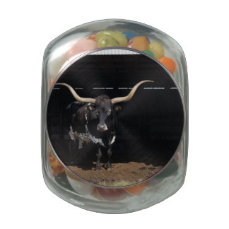 Black Texas Longhorn Jelly Belly Candy Jars