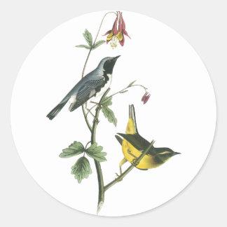 Black-throated Blue Warbler, John Audubon Classic Round Sticker