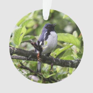Black-throated Blue Warbler Ornament