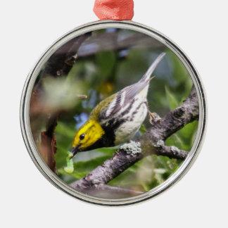 Black-throated Green Warbler Metal Ornament