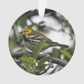 Black-throated Green Warbler Ornament
