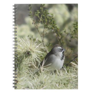 Black-Throated Sparrow on Cactus Notebook