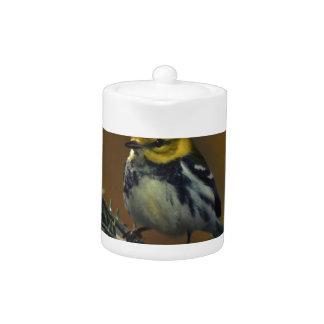 Black throated warbler teapot
