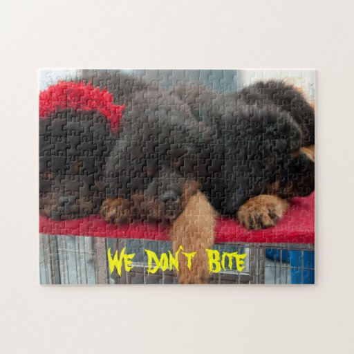 Black Tibetan Mastiff dog Jigsaw Puzzle